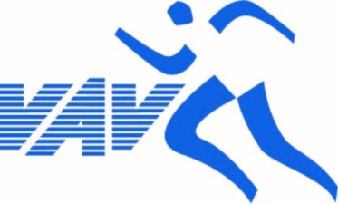 591_vav_logo_2.jpg
